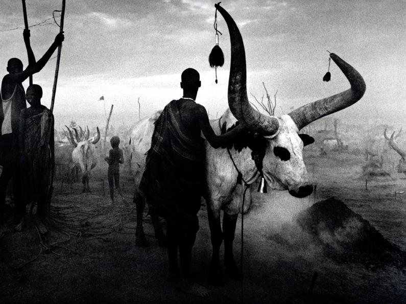 El fotógrafo de la semana: Sebastião Salgado