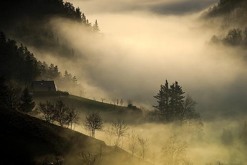 Consejos para fotografiar a la niebla (I)