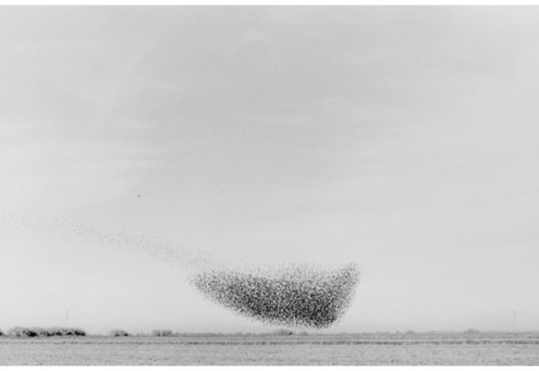 PHotoEspaña da sus premios a los mejores libros de fotografía de 2011