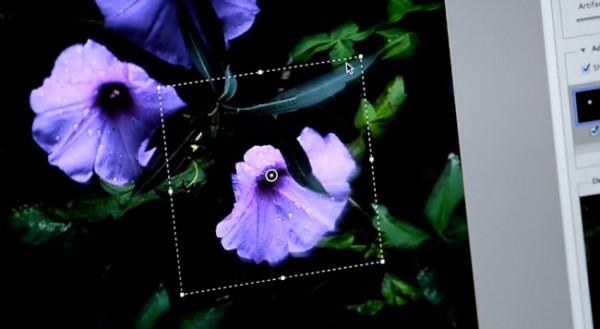 Sneak Peak, el nuevo filtro de Adobe para enfocar imágenes