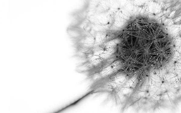 Consejos para empezar en el mundo de la fotografía abstracta (II)
