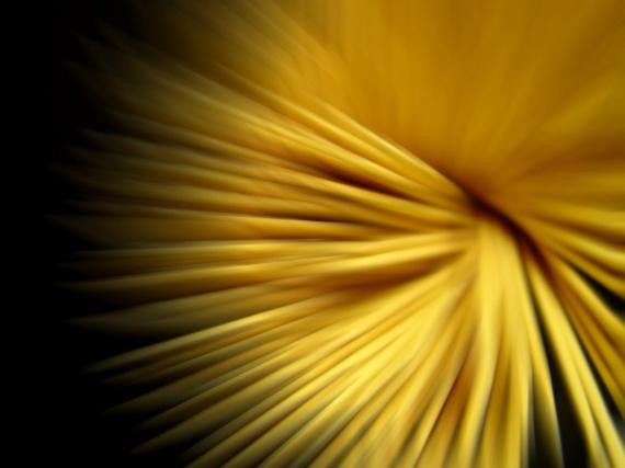 Consejos para empezar en el mundo de la fotografía abstracta (I)