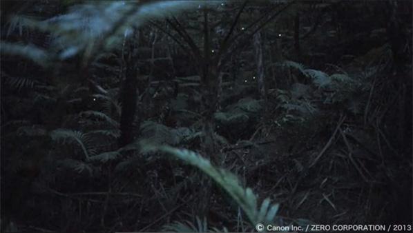 Canon desarrolla un sensor capaz de grabar en la oscuridad