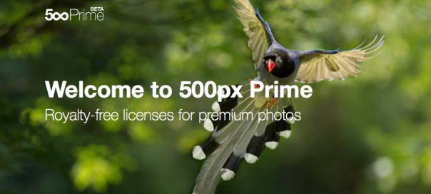 500px cambia su política de venta de fotos online