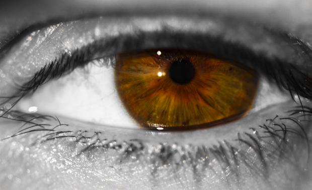Google quiere hacer de nuestros ojos una cámara de fotos
