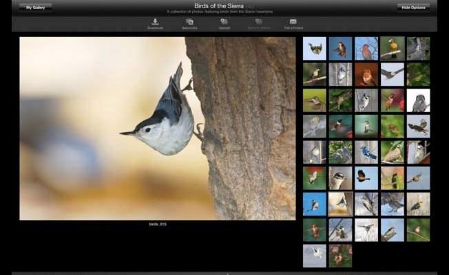 Adobe te lo pone fácil para migrar tus fotos de Aperture e iPhoto a Lightroom