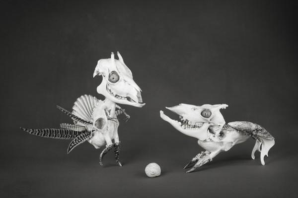 El certamen de fotografía artística EntreFotos se celebrará a finales de noviembre en Madrid